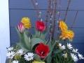 spring-2015-2