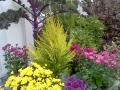 winter-planter-6