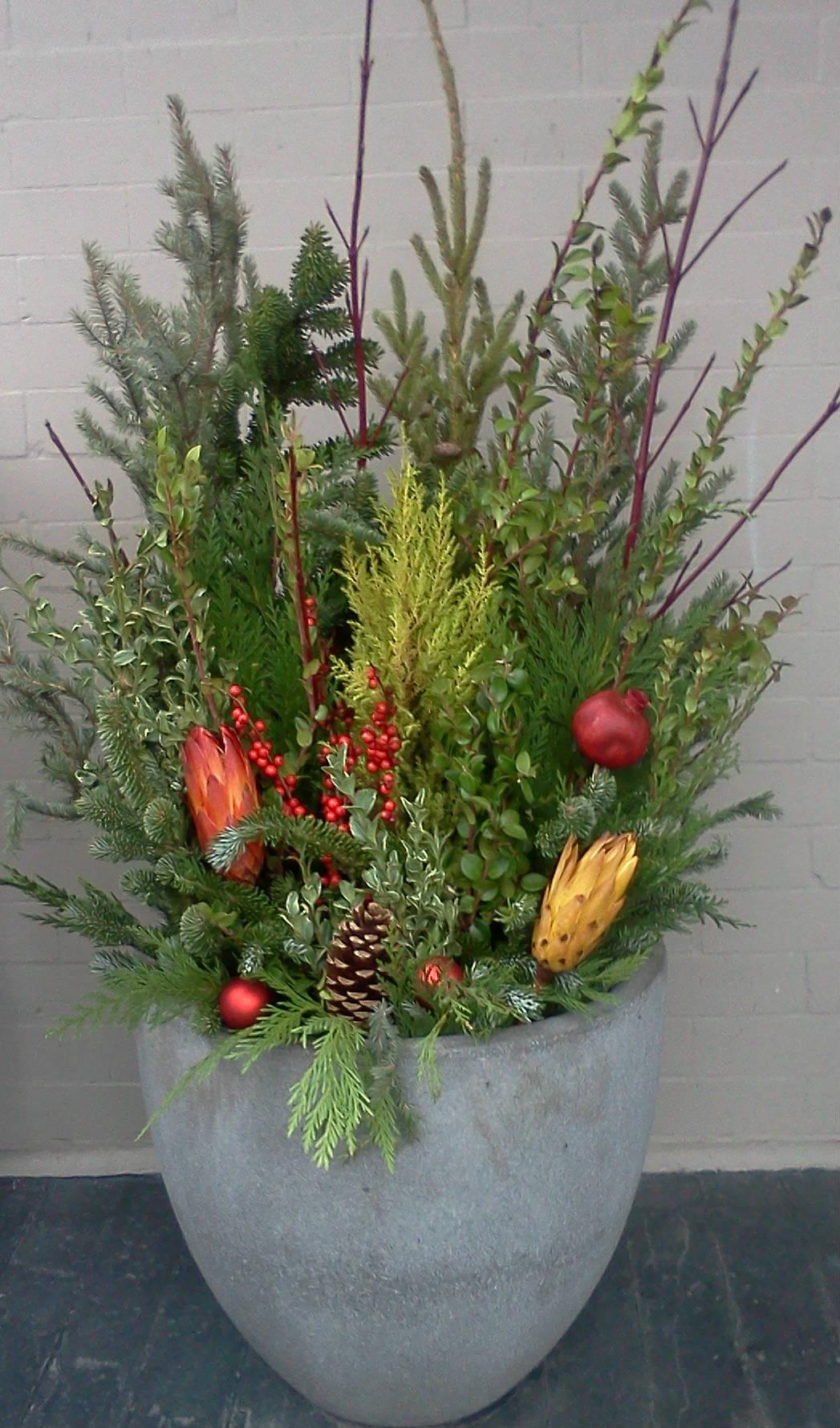 winter-planter-2